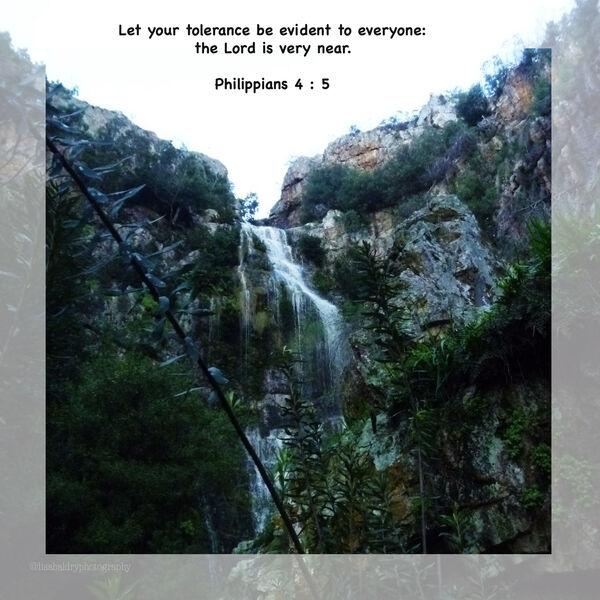 LBP - Philippians 4 : 5