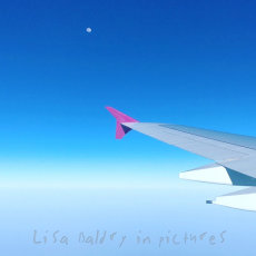 Moon, sky and wings ...