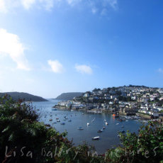 A fabulous morning walk in Salcombe, Devon ... how can you get bored of that view!?
