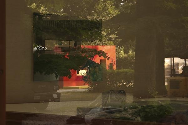 Biennale 2009