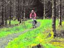 Cycling down Seven Stanes mountain bike trails, near Newcastleton.