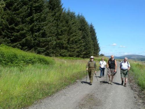 Walking in open country near Newcastleton, Scottish Borders.