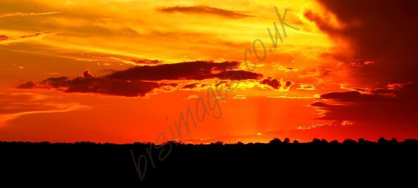 """""""Kalahari Sunset"""""""
