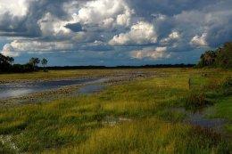 """Okavango Delta"""