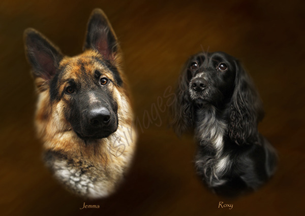 """Jemma & Roxy"" Pet Portrait."