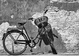 1st Place 'Bicycle' Rachel Domleo