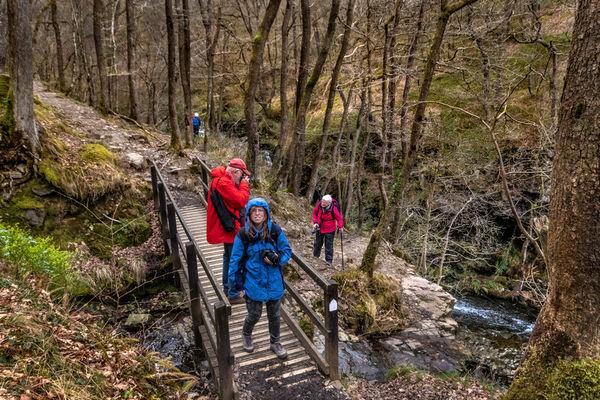 Walk along Pont Melin-Fach Waterfalls, April 2019.