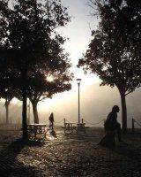 Commended Rachel Domleo 'Misty Morning Stroll'