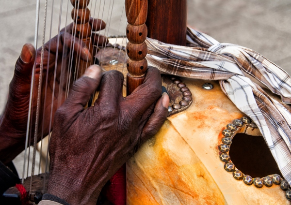 'Kora Musician'