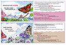 Butterfly book 1-4