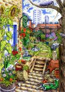 Rear garden biodiversity