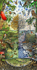 Autumn and Winter biodiversity