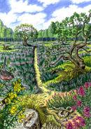 Heathland biodiversity