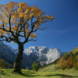 Autumn in the Karwendel mountains