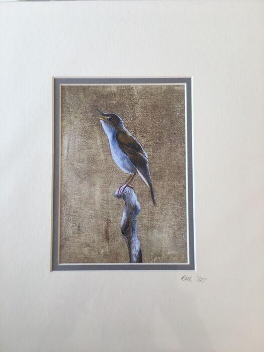 Nightingale Limited Edition Print