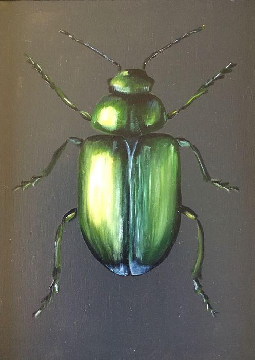 Green plant beetle