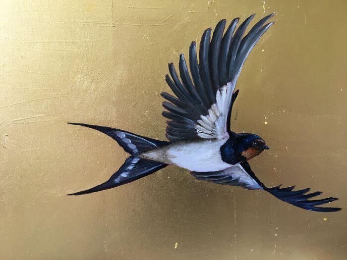 Swooping Swallow II