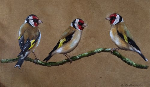 Trio of Goldfinches
