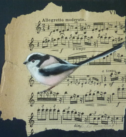 Sounds of Spring ~ Long Tailed Tit