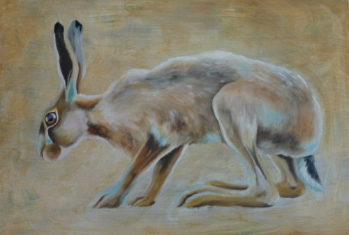 Summer Hare II