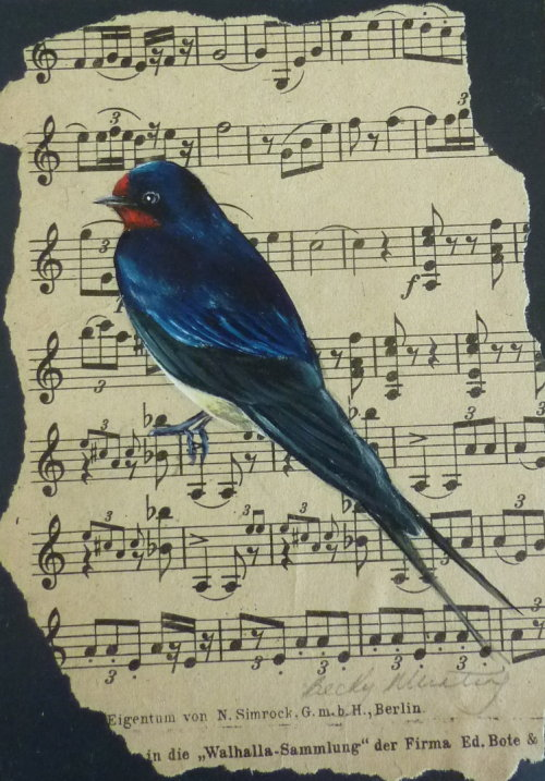 Sounds of Summer ~ Swallow