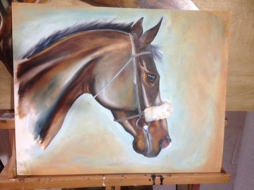 Thoroughbred racehorse study