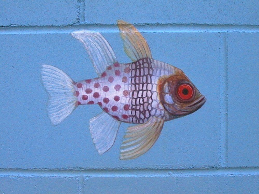 bath hosp 06 pyjamafish original