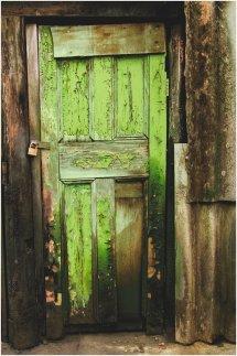 shed door