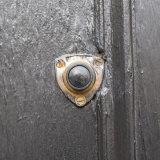 Doorbells of London-3389