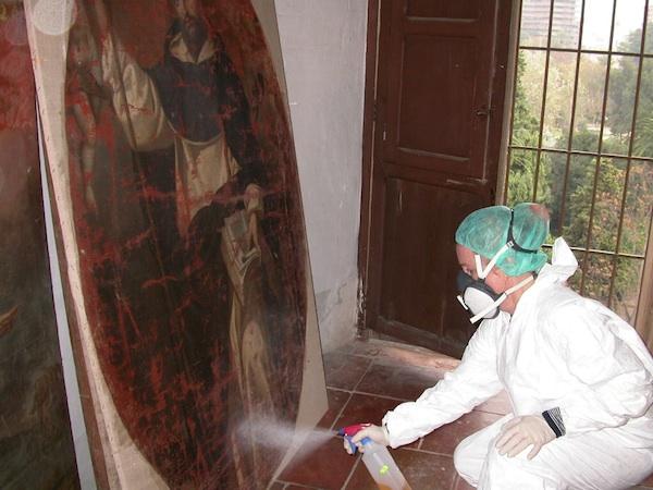 Eradicating mould infestation.
