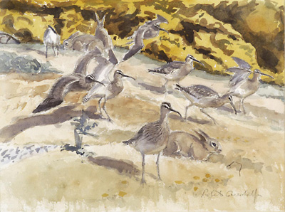 Whimbrel and Rabbits<br> £450.00
