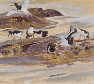 Oyster catchers £650.00