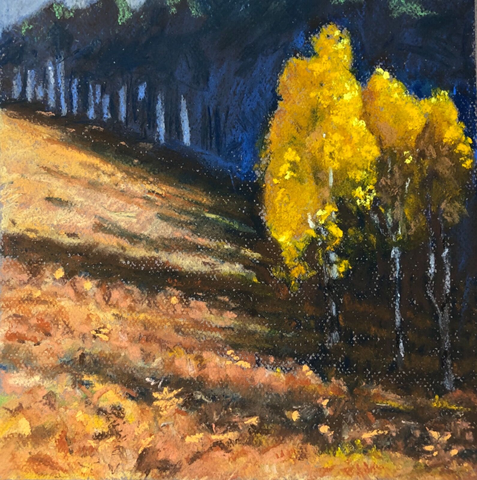 Autumn colours Creag Bheag