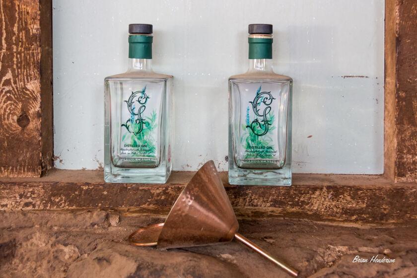Old Gin Bottles