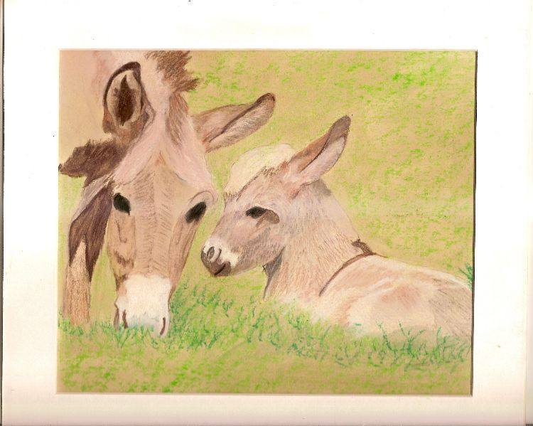 donkey and young