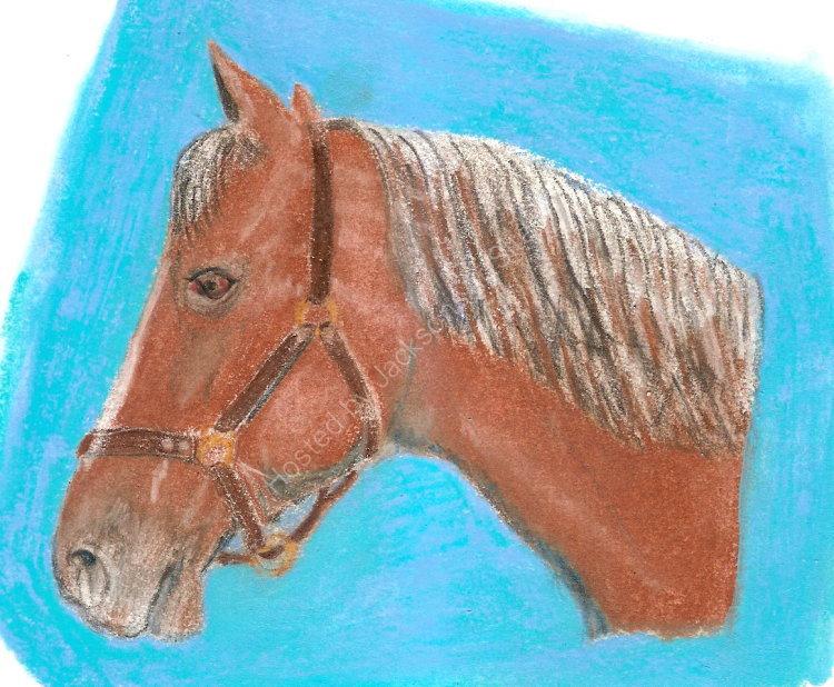 Working horse NFS