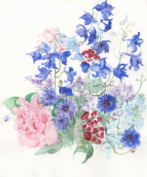 Peony, Cornflower & Delph Flowers