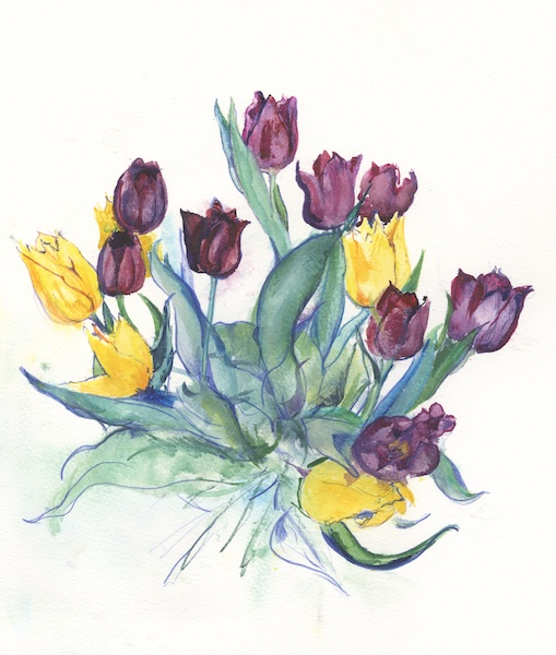 Yellow & Purple Tulips