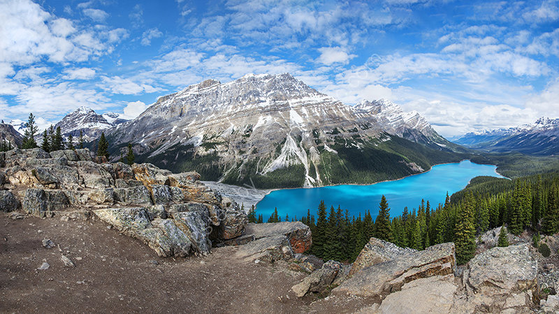 Peyto Lake overview
