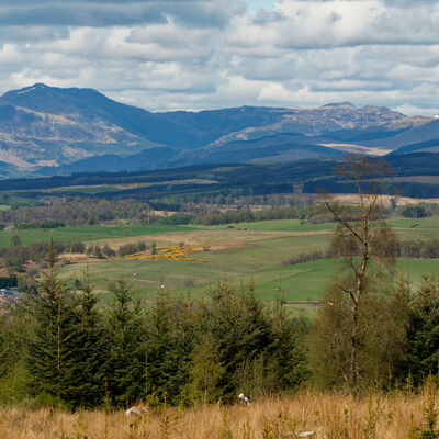 Ben Ledi, Trossachs from above Dunblane