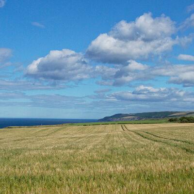 East coast of Scotland near Dunbar
