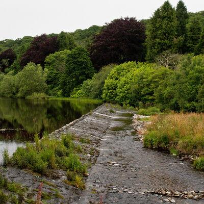 Whiteadder Water, Abbey St Bathans