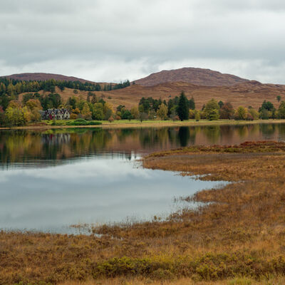Autumn colours 4, Inveroran, Highland