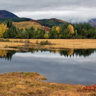 Autumn glory, Inveroran