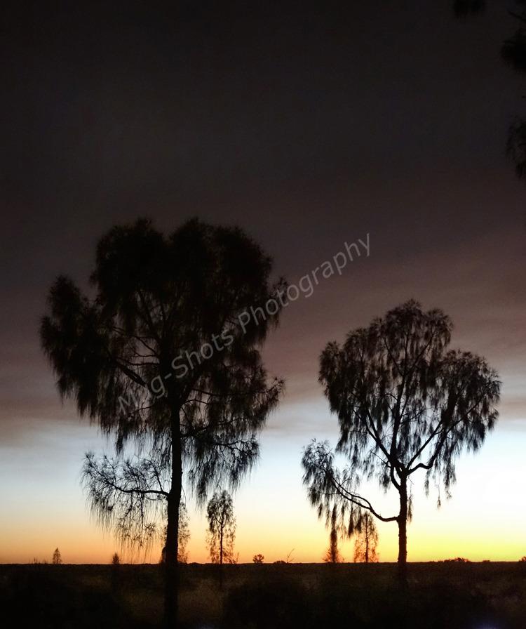 Desert dusk