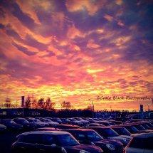MINI Sunset