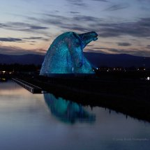 Twilight Kelpies