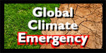 Button-Climate Emergency