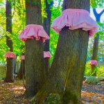 Tree Skirts - by Elizabeth White (USA)