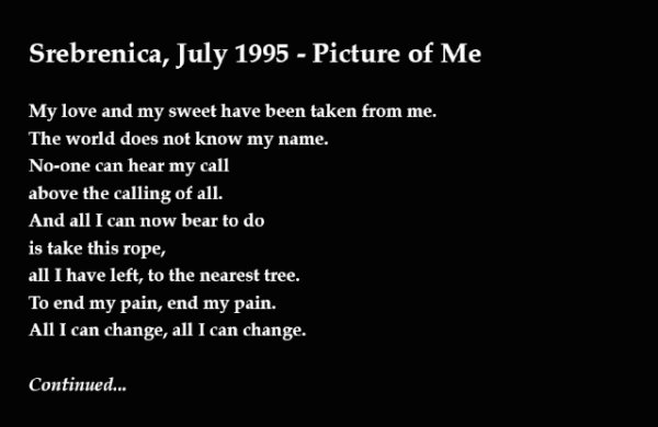 Srebrenica, July 1995 - Picture Of Me - by Chris Greenwood (England)